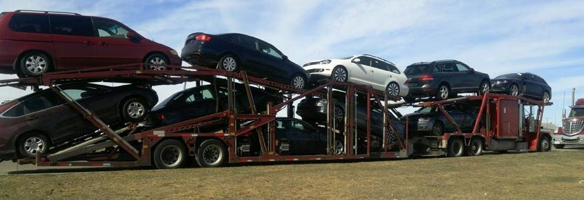 How to Search for Canada Car Shipping Service Online the Right Way